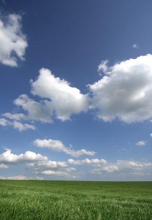 Beautiful farmlands with lovely clouds. Stock Photo - 16024990