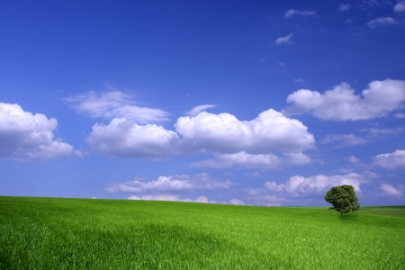 Beautiful farmlands with lovely clouds Stock Photo - 16649902