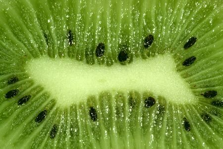 Slice of an kiwi close up photo