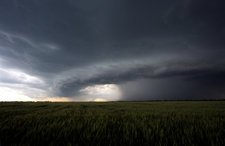 hurricane weather: The beginning of summer hurricane over a green field