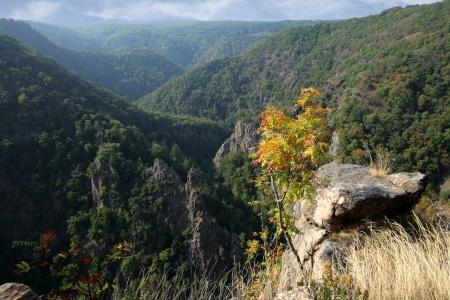 Landschaft der Berge Harz in Deutschland