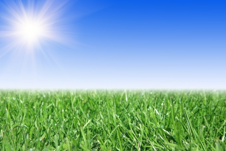 Beautiful farmlands with blue sun sky Stock Photo - 16018849
