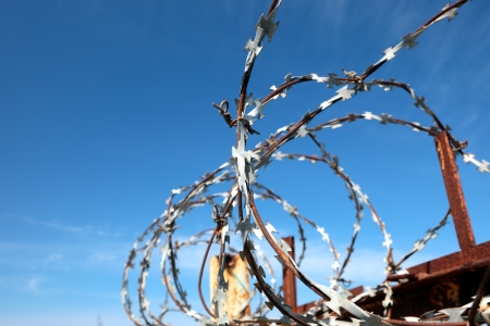 Barbed wire tense on a fence against the blue sky Stock Photo - 16778688