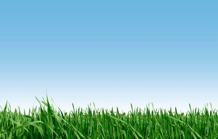 Beautiful farmlands and blue sky photo