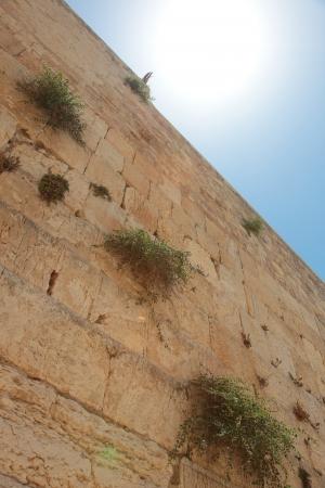 Zachodnia ściana w Jerozolimie Zdjęcie Seryjne