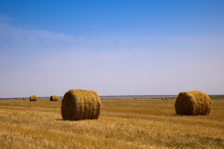 Haystack after harvesting against the blue sky photo