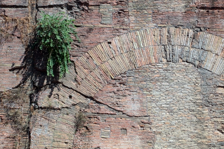 An ancient wall made of red bricks in Rome, Italy. A roman ruin inside the forum.