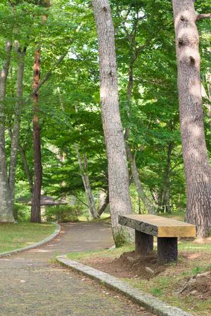walking paths: Walking paths and bench