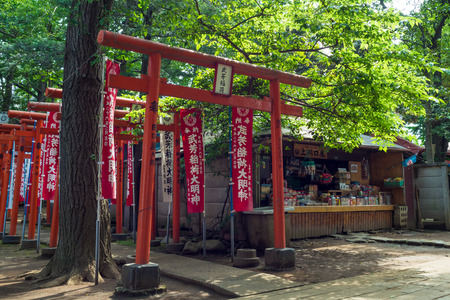 torii: Torii continuing