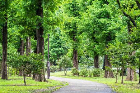 promenade: Green promenade