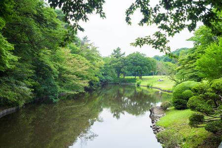 stillness: Meiji Shrine north pond