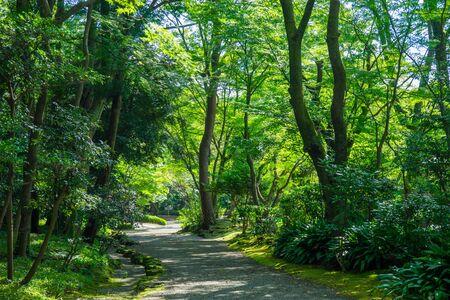 promenade: Promenade of Rakujuen Park