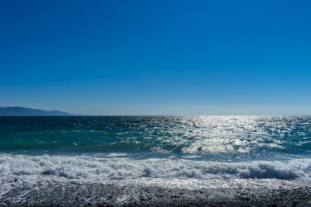 shore: Suruga Gulf shore