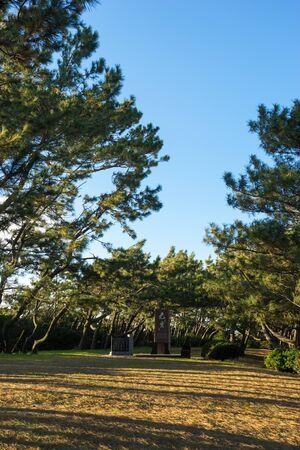 openspace: Senbonhama Park