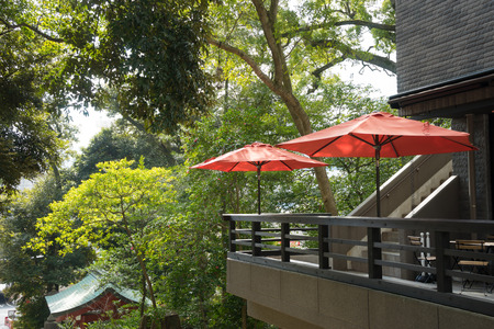 parasol: Scenery with the red parasol