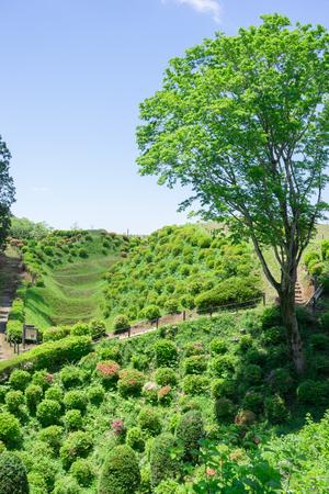 ruin: Scenery of the Yamanaka Castle ruin Park