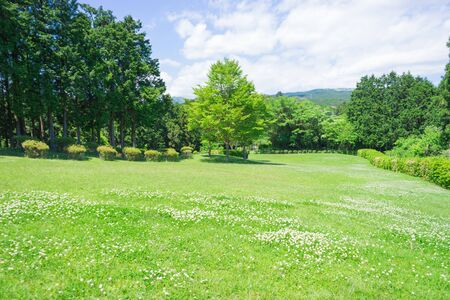 open space: Open space of the Yamanaka Castle ruin Park Stock Photo