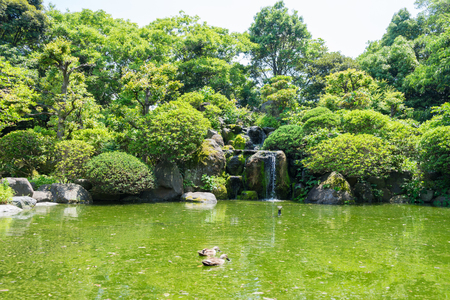 early summer: Kakita River Park of the early summer Stock Photo