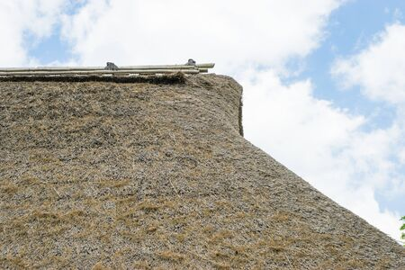 thatch: Roof of thatch