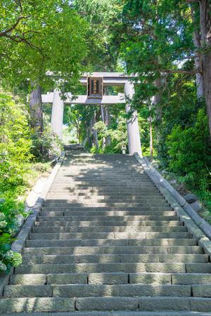 an approach: Approach to Izusan shrine Stock Photo