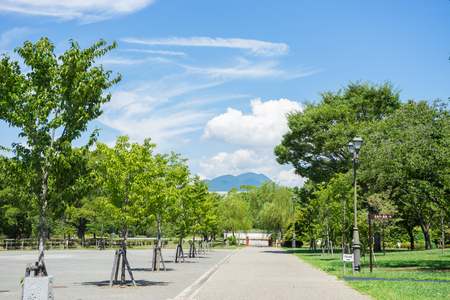 Summer Sumpujo Park