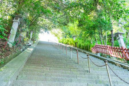 sengen: Stone stairs of Shizuoka Sengen Shrine