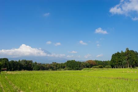 Mt. Fuji and autumn rural scenery Stock Photo