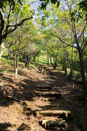 mt: Mt. Kanuki hiking route