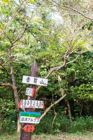 mountaintop: Mt. Kanuki mountaintop
