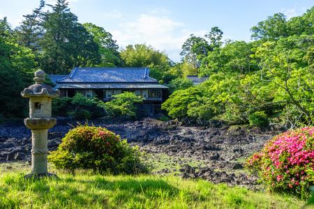 Dry Kohamagaike Pond