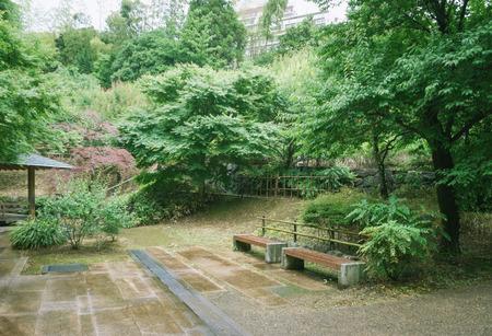 Scenery with bench / Atami plum garden Standard-Bild