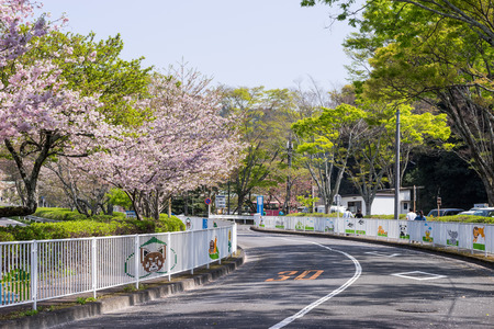Road near the entrance to Nihondaira Zoo