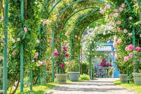 Shuzenji Nijinosato Roses Arch