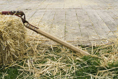 flail: Flail And Straw