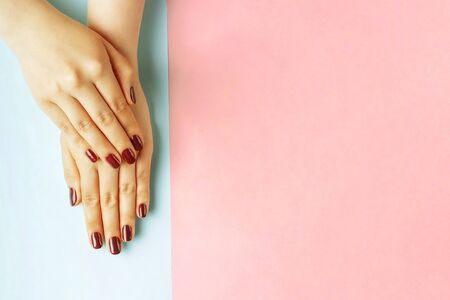 Female hands with red manicure on a pink and blue background, a top view