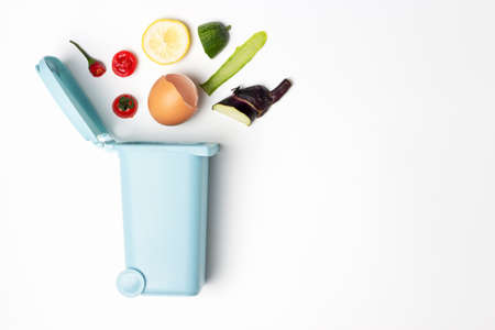 Organic waste and trash can on white background, copy space