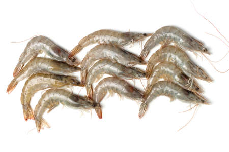 A gray raw shrimp on on a white background, top view.
