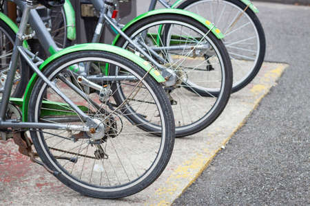 Green bicycles for rent close-up front view. Stock Photo