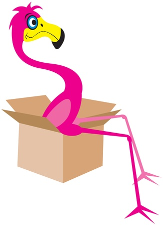 Flamingo sitting in a moving box Vector