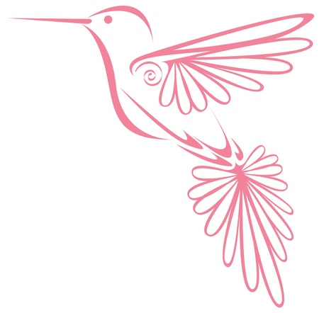 Hummingbird Stock Vector - 12473170