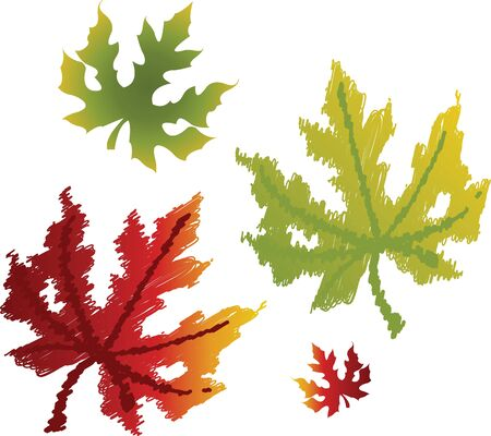 Maple leaves Stock Vector - 12473168