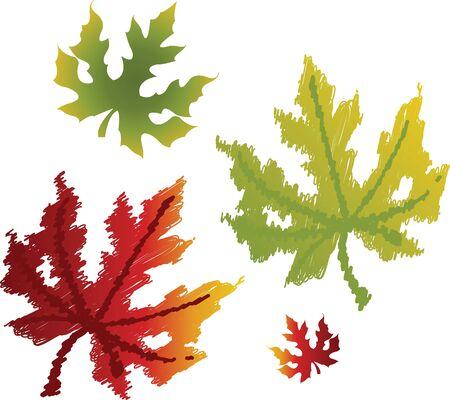 Maple leaves Stock Vector - 12473168