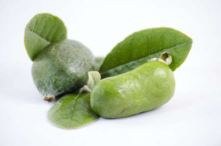 feijoa: feijoa Stock Photo