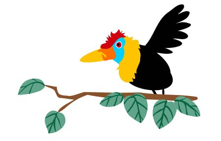 Indonesian primary color bird, red hornbill