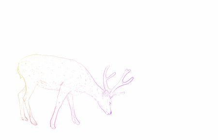 Photorealistic animal illustration, side view of rainbow colored deer