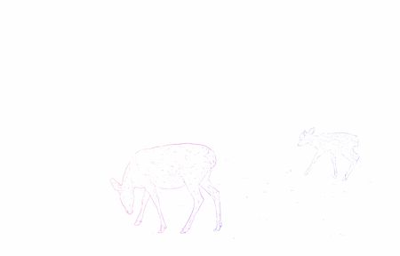 Realistic animal illustration, landscape with rainbow-colored deer parent and child