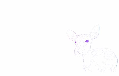Realistic animal illustration, rainbow-colored deer seen from the front Ilustração