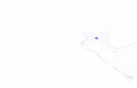 Realistic animal illustration, rainbow-colored deer stretching his neck