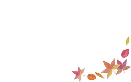 Illustration of maple leaves and autumn leaves