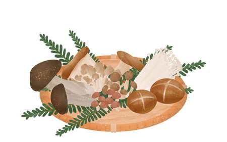 Illustration of mushrooms harvested by mushroom picking, the taste of autumn Фото со стока
